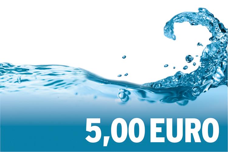 5,00 EURO