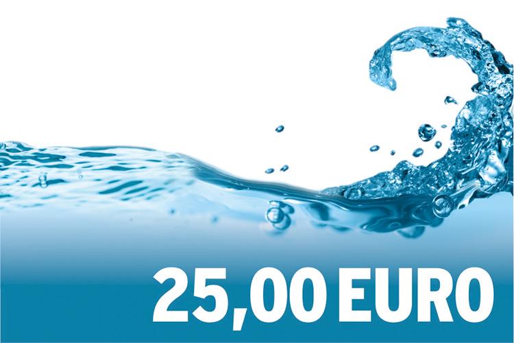 25,00 EURO